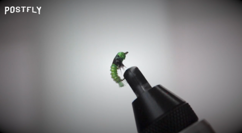 How to Tie : JC's Electric Caddis