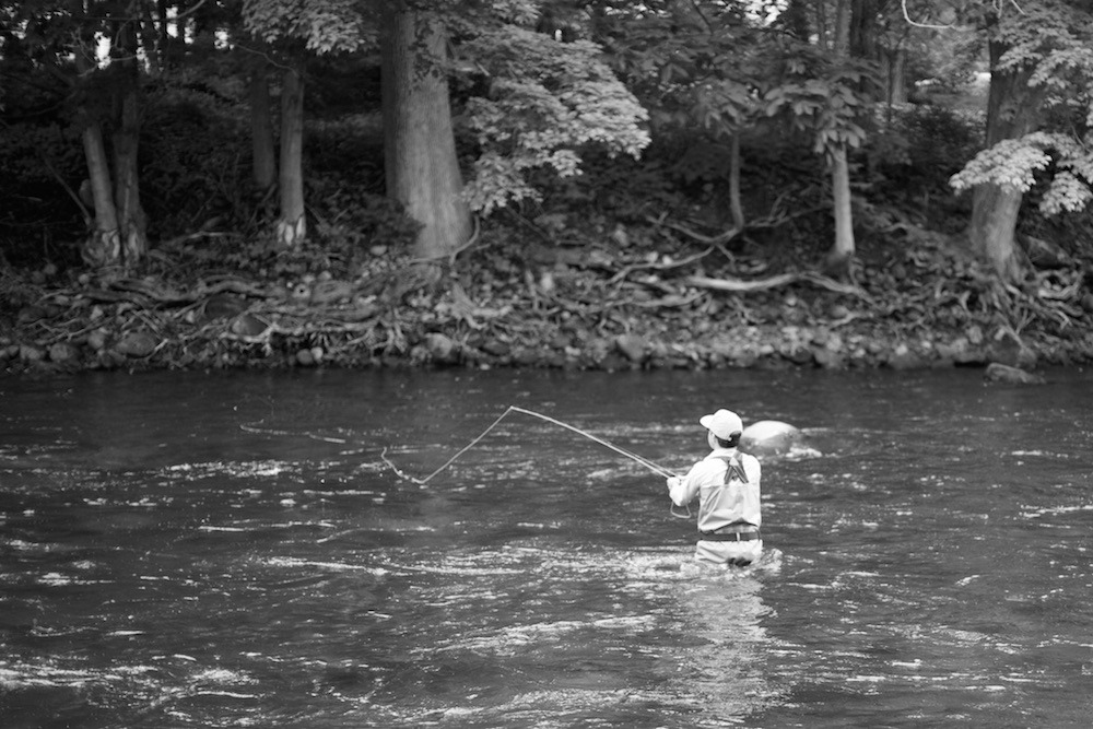 The Beginner's Guide to Fly Line