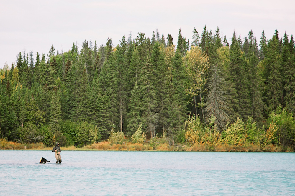 5 Reasons To Buy Your Fishing License Right Now