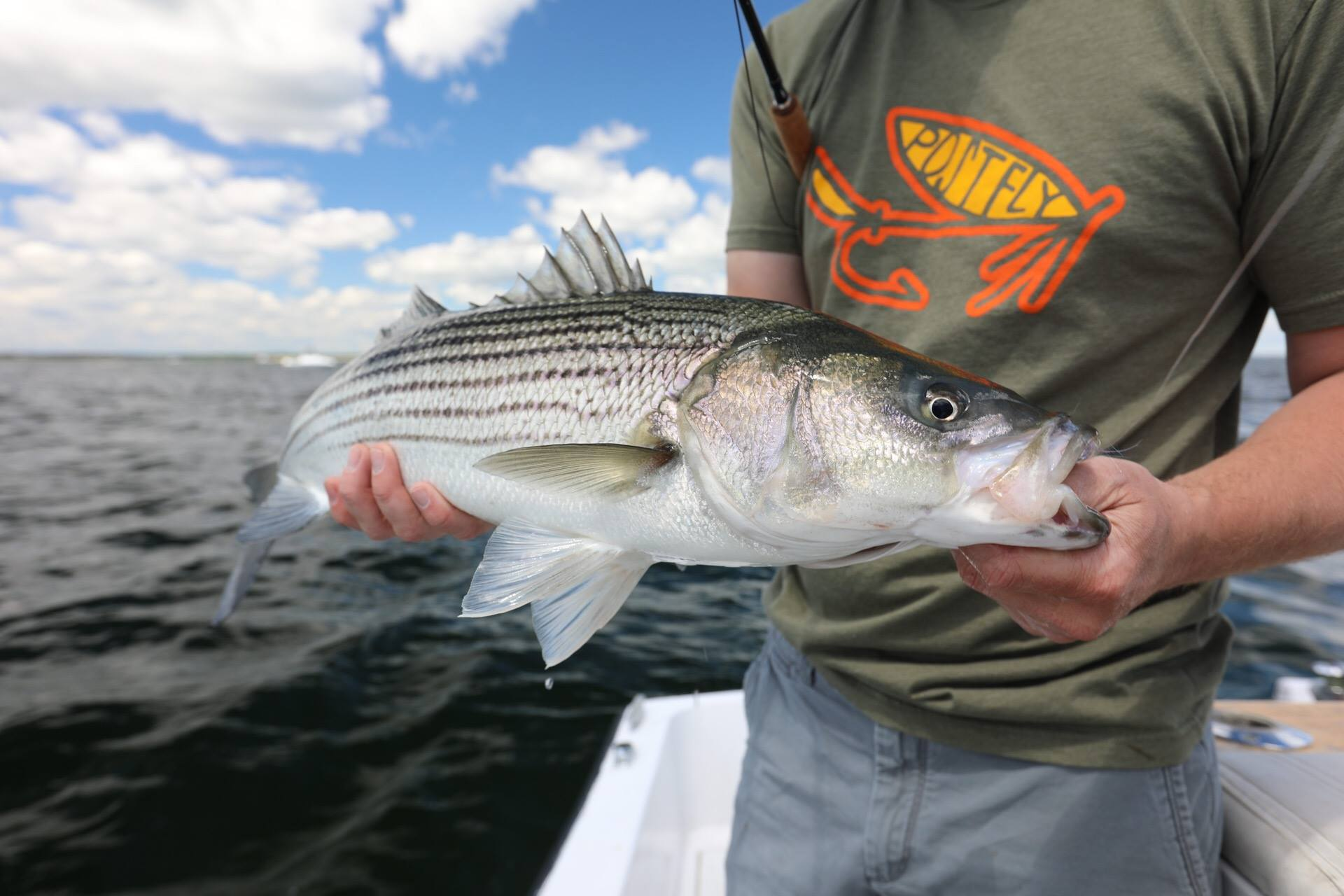 """Tying for Stripers (a.k.a., """"All About the Bass, No Treble-Hook"""")"""