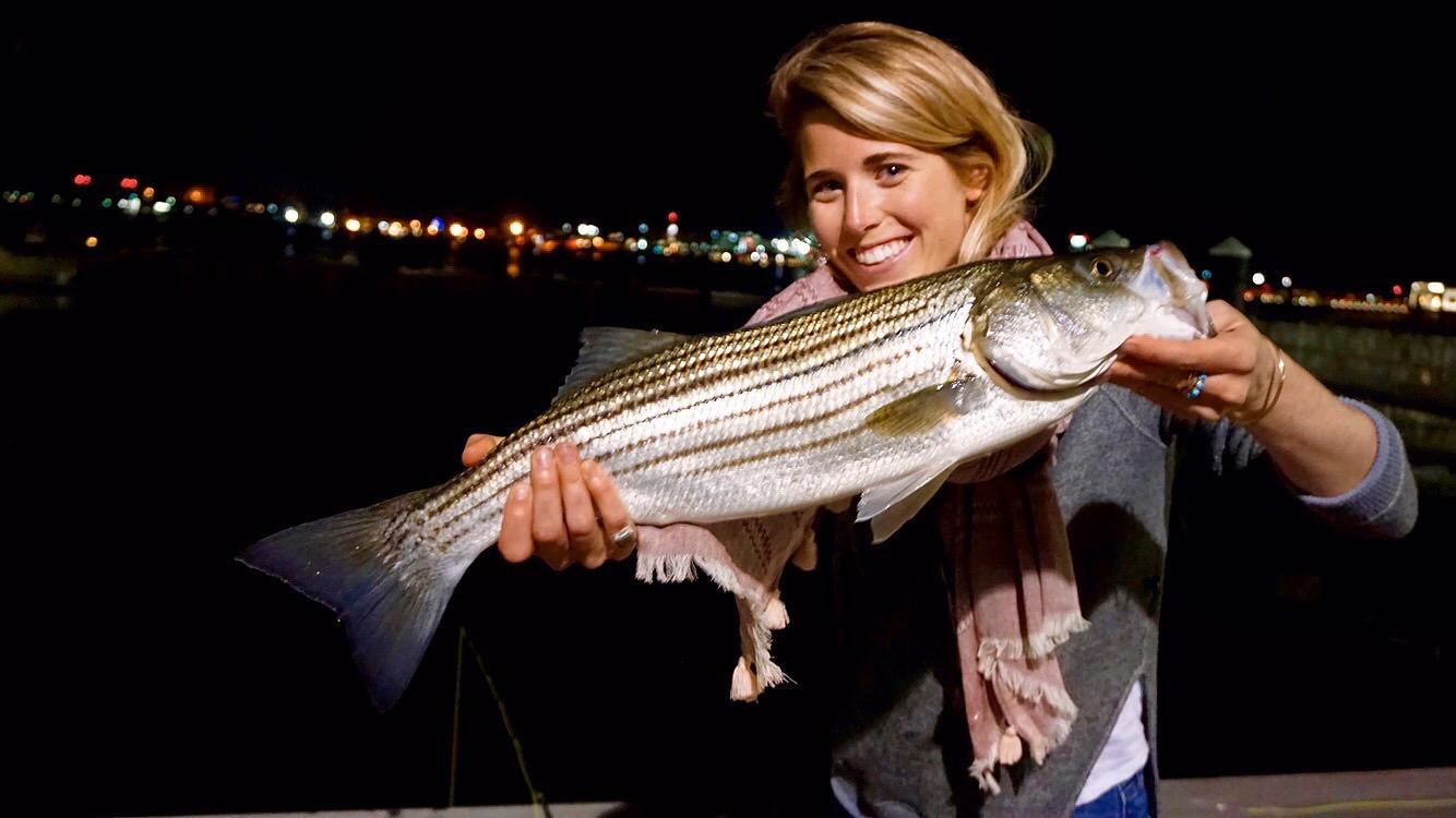 Urban Angling 101: Striped Bass