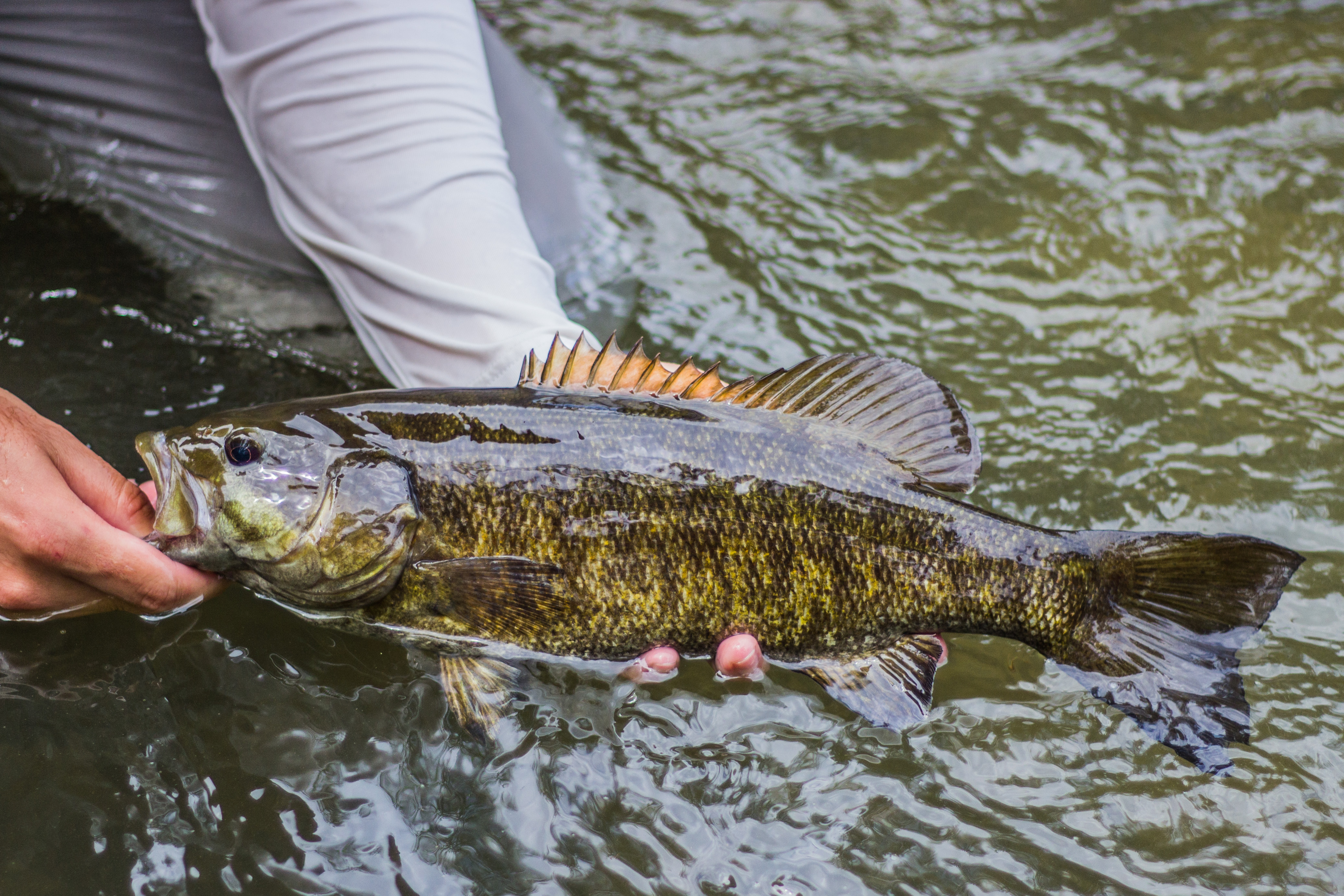 How to Find Early Spring Smallmouth