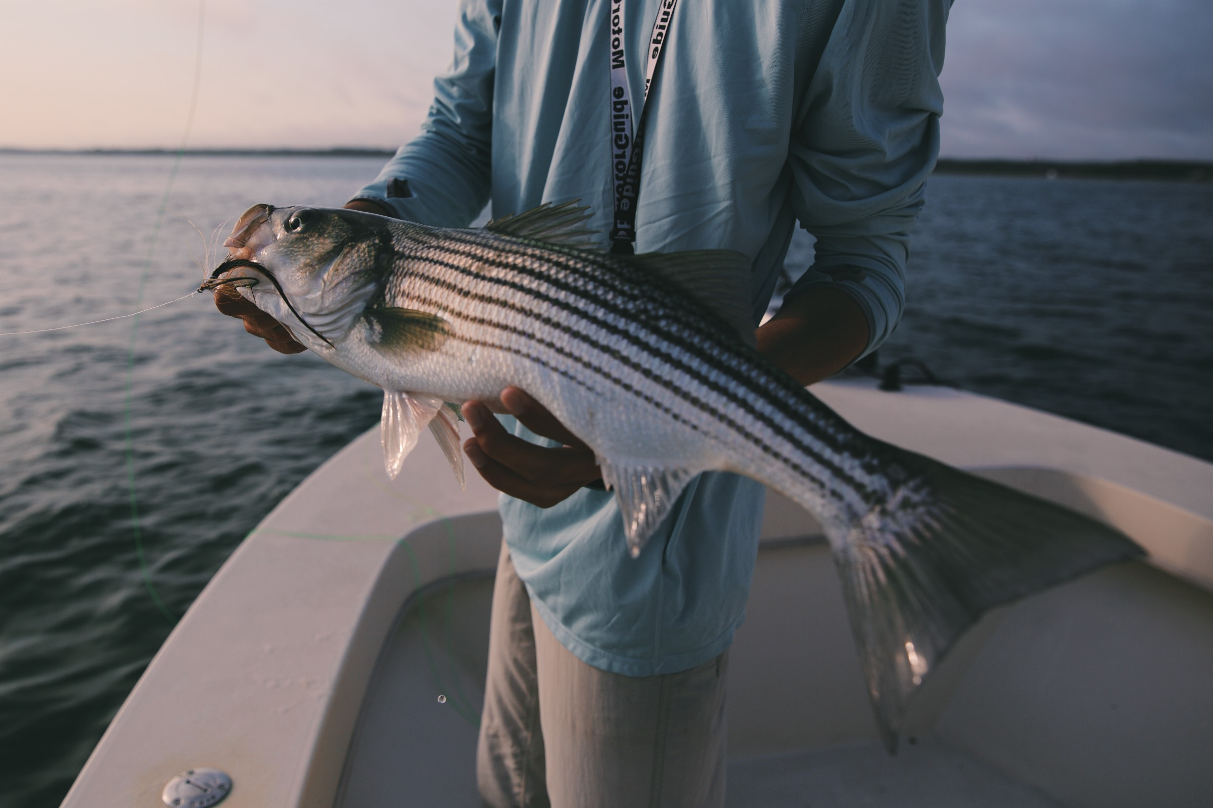Essential Gear for Striper Fly Fishing from a Boat